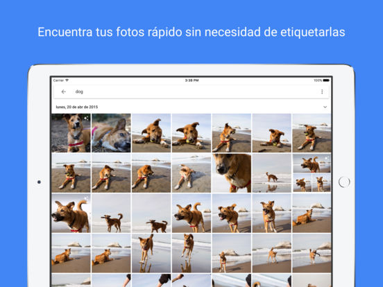 Google Fotos: almacenamiento para fotos y vídeos Screenshot