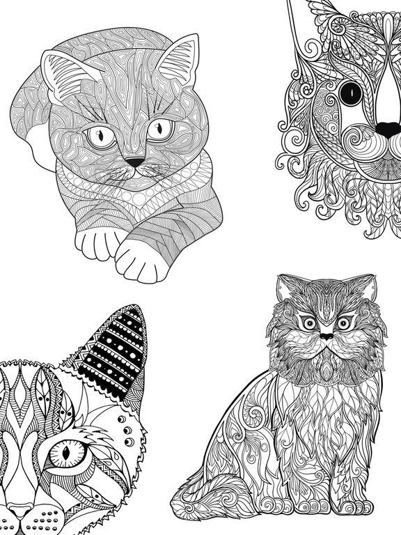 Mandalas De Gatos Para Colorear Adultos Premium