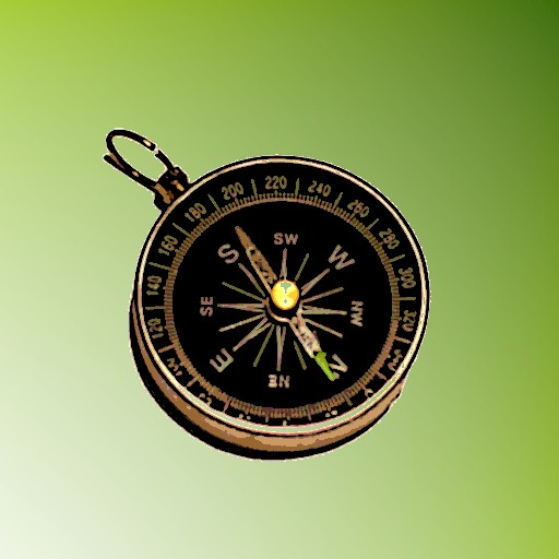 A+ Voice Compass