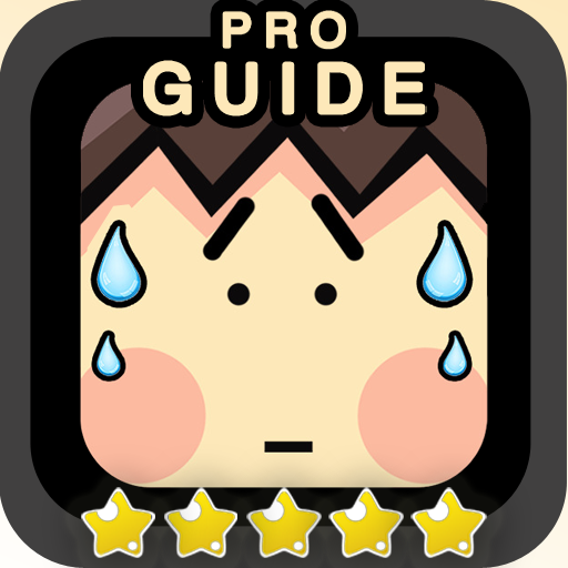 Guide for Stupidness 2 Pro
