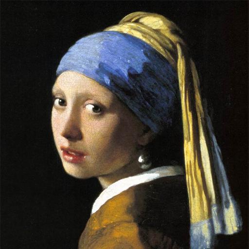 Vermeer HD