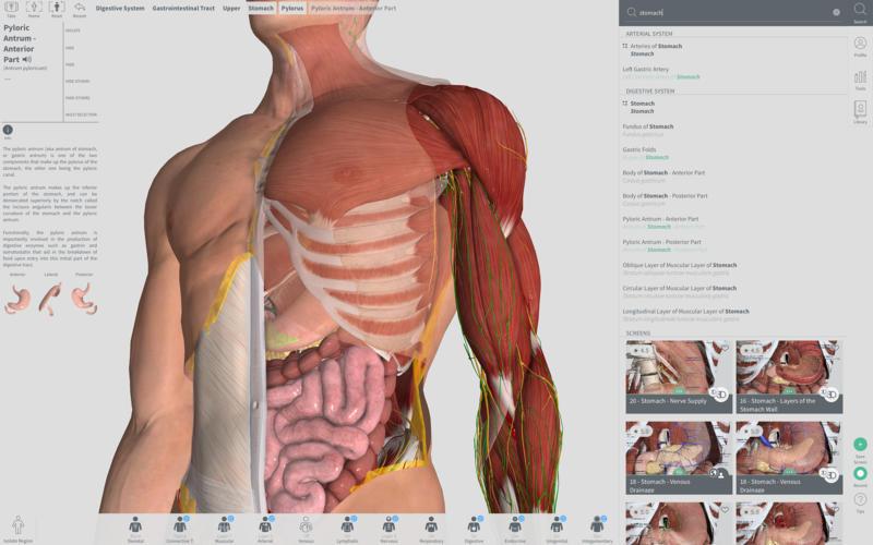 Complete Anatomy 2019 4.0.1 Mac 破解版 – 强大的3D医学人体模型