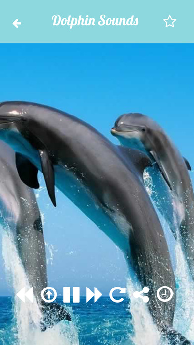 App Shopper: Dolphin Sounds Relax and Sleep With Calming ...