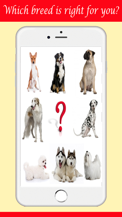 Guess The Dog Breeds Foto Quiz - Watch Pet Doggie,Cute Pup or Hound Dog Pics & Answer Pedigree, New Fun Quizzes! Screenshot on iOS